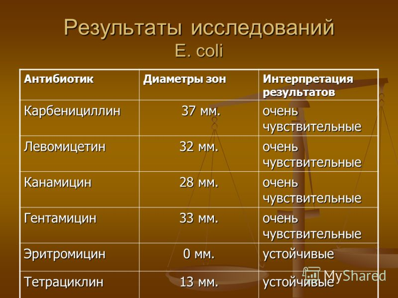 Результаты исследований E. coli Антибиотик Диаметры зон Интерпретация результатов Карбенициллин 37 мм. 37 мм. очень чувствительные Левомицетин 32 мм. очень чувствительные Канамицин 28 мм. очень чувствительные Гентамицин 33 мм. очень чувствительные Эр