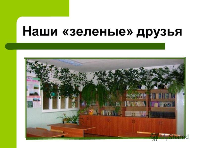 Наши «зеленые» друзья