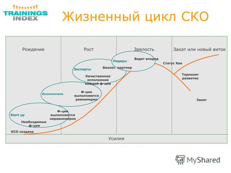 Жизненный цикл СКО