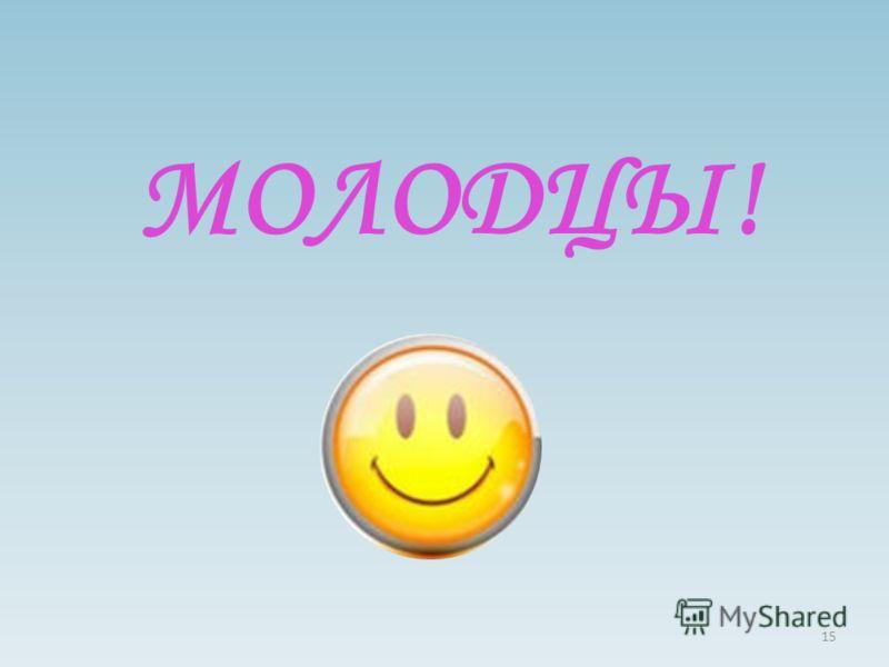 МОЛОДЦЫ! 15
