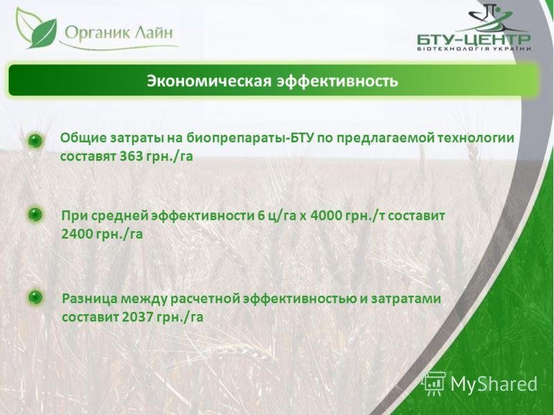 Экономическая эффективность Общие затраты на биопрепараты-БТУ по предлагаемой технологии составят 363 грн./га При средней эффективности 6 ц/га х 4000 грн./т составит 2400 грн./га Разница между расчетной эффективностью и затратами составит 2037 грн./г