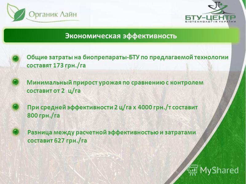 Экономическая эффективность Общие затраты на биопрепараты-БТУ по предлагаемой технологии составят 173 грн./га Минимальный прирост урожая по сравнению с контролем составит от 2 ц/га При средней эффективности 2 ц/га х 4000 грн./т составит 800 грн./га Р