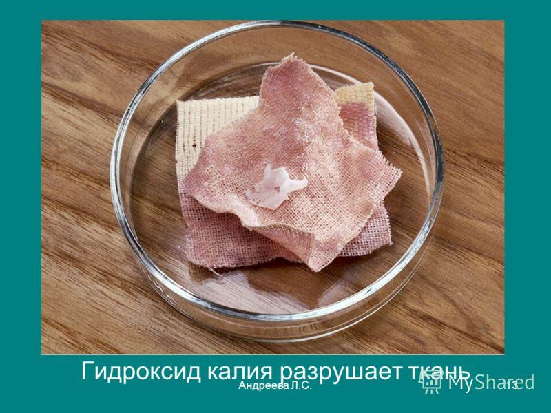 Андреева Л.С.13 Гидроксид калия разрушает ткань