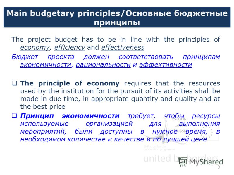 Main budgetary principles/Основные бюджетные принципы The project budget has to be in line with the principles of economy, efficiency and effectiveness Бюджет проекта должен соответствовать принципам экономичности, рациональности и эффективности The