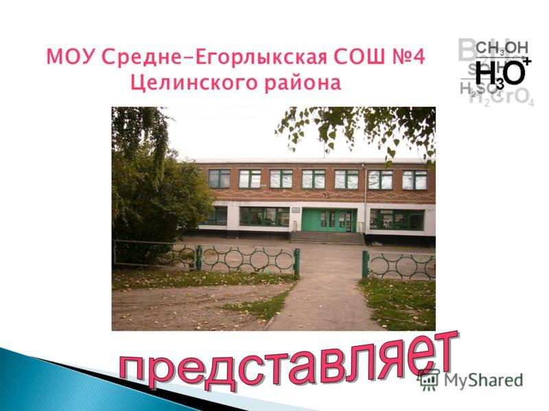 МОУ Средне-Егорлыкская СОШ 4 Целинского района