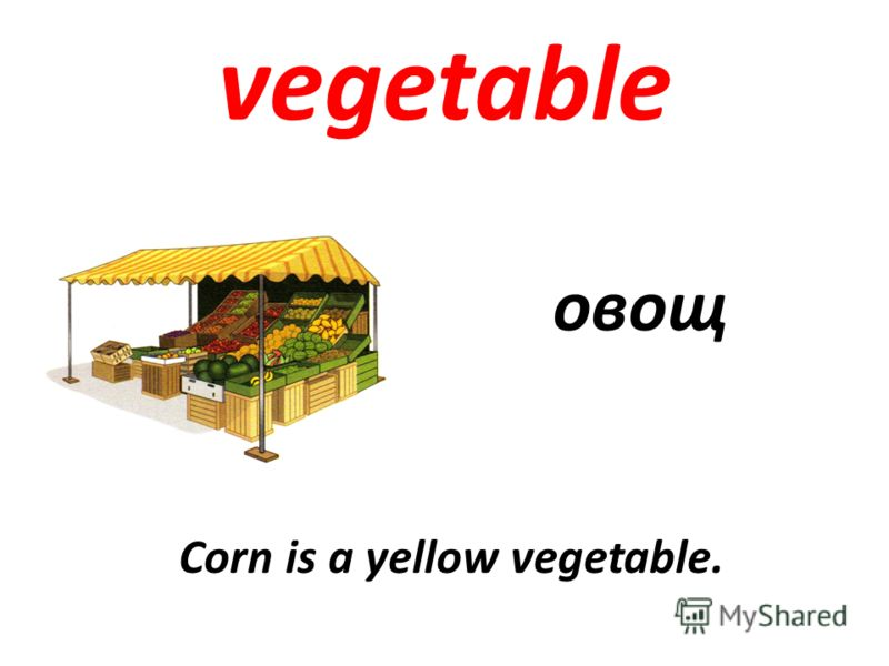 vegetable овощ Corn is a yellow vegetable.