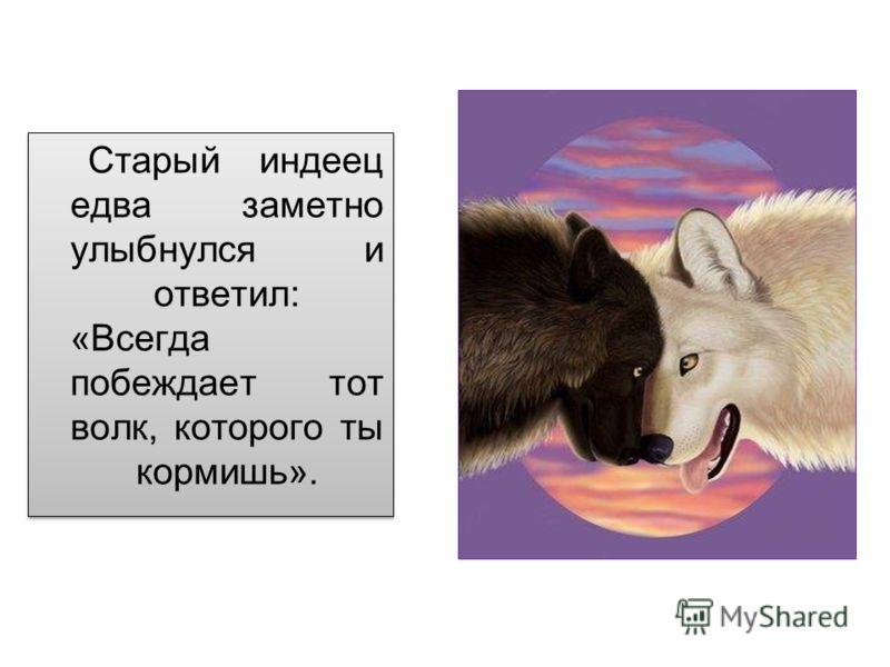 Старый индеец едва заметно улыбнулся и ответил: «Всегда побеждает тот волк, которого ты кормишь».