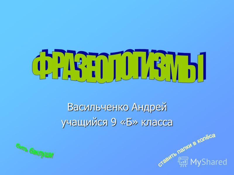 Васильченко Андрей учащийся 9 «Б» класса