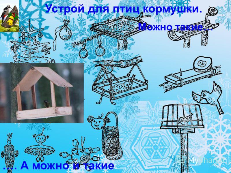 Устрой для птиц кормушки. Можно такие… …. А можно и такие