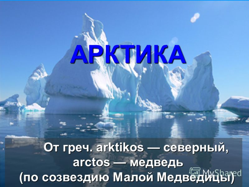 От греч. arktikos северный, аrctos медведь (по созвездию Малой Медведицы) АРКТИКА