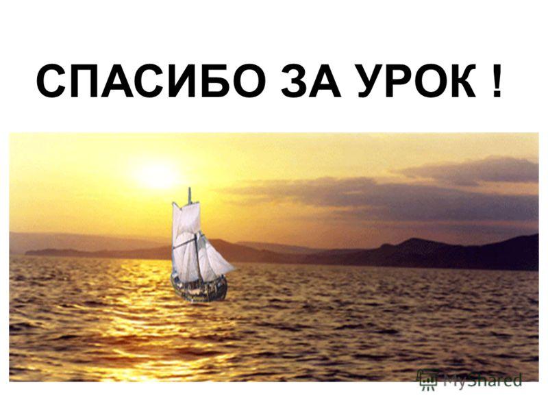 СПАСИБО ЗА УРОК !