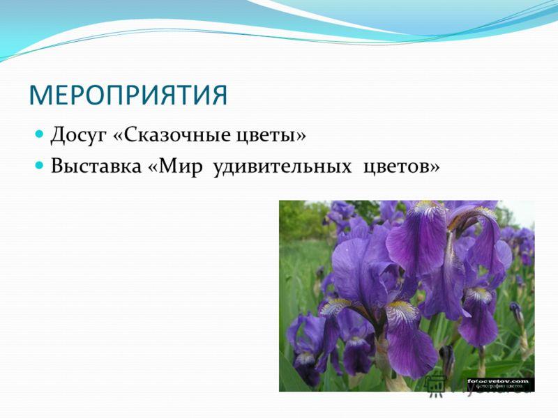 МЕРОПРИЯТИЯ Досуг «Сказочные цветы» Выставка «Мир удивительных цветов»