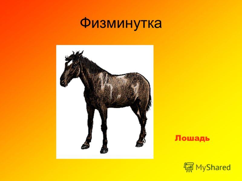 Физминутка Лошадь