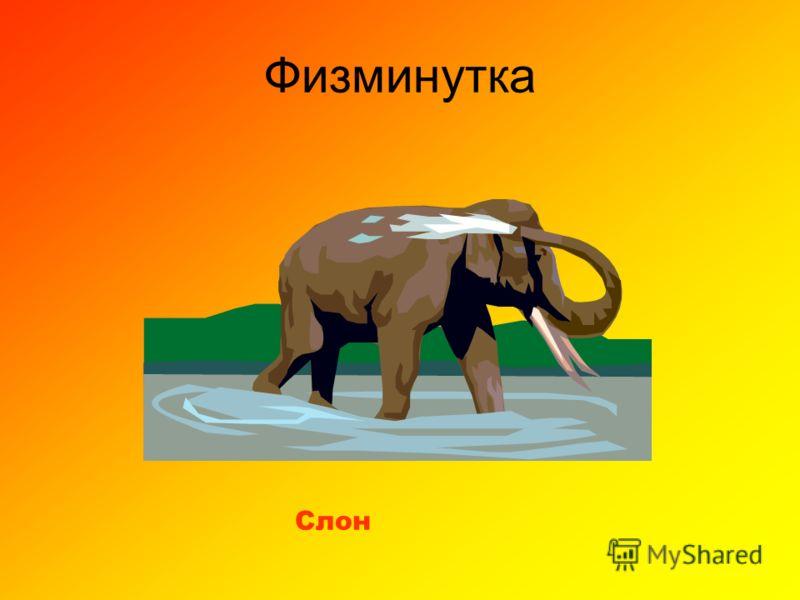 Физминутка Слон