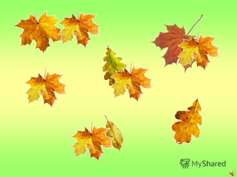 Проверь себя Листья, ранней Раскрасились, улетают Раскрасились - Улетают -