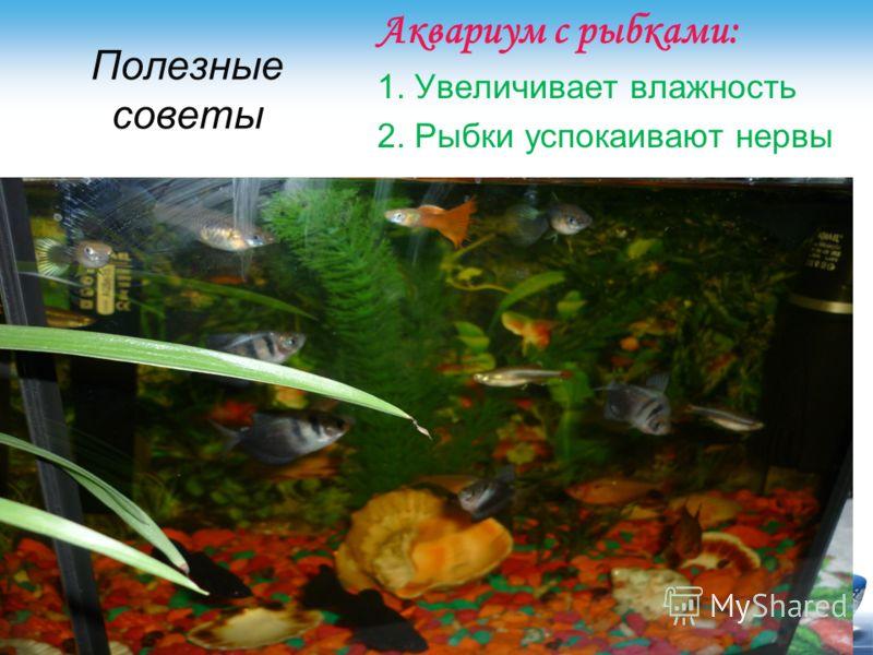 Полезные советы Аквариум с рыбками: 1. Увеличивает влажность 2. Рыбки успокаивают нервы