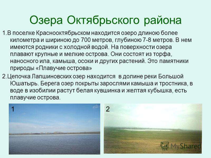 Озера Октябрьского района 1.В поселке Краснооктябрьском находится озеро длиною более километра и шириною до 700 метров, глубиною 7-8 метров. В нем имеются родники с холодной водой. На поверхности озера плавают крупные и мелкие острова. Они состоят из