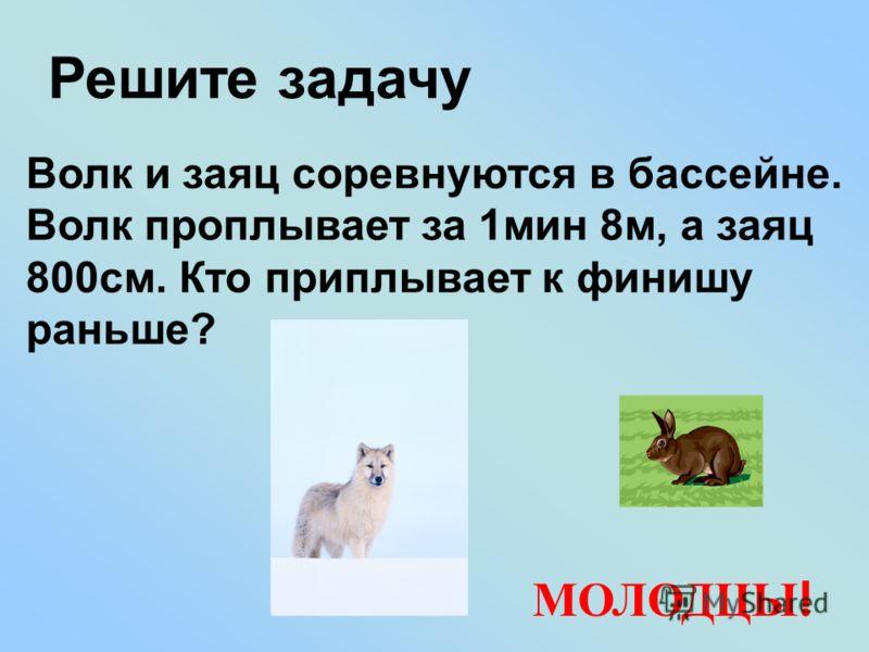 Решите задачу Волк и заяц соревнуются в бассейне. Волк проплывает за 1мин 8м, а заяц 800см. Кто приплывает к финишу раньше? МОЛОДЦЫ !