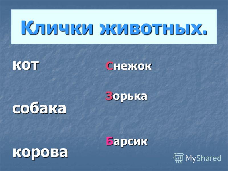 Клички животных. котсобакакорова Снежок Зорька Барсик