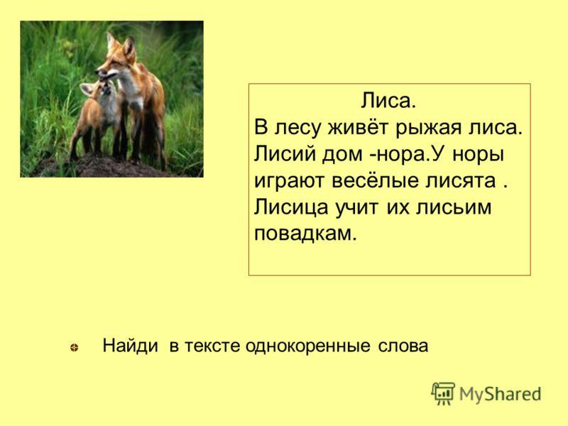 Лиса. В лесу живёт рыжая лиса. Лисий дом -нора.У норы играют весёлые лисята. Лисица учит их лисьим повадкам. Найди в тексте однокоренные слова