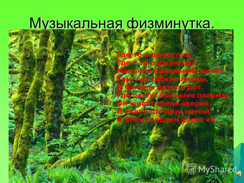 Музыкальная физминутка. Где-то в джунглях, Где – то в джунглях Мальчик маленький живёт. Там, где гибкие лианы, И бананы лезут в рот. Где растут большие пальмы Он живет среди зверей. И зовет волчицу,мамой И всем сердцем дорог ей.