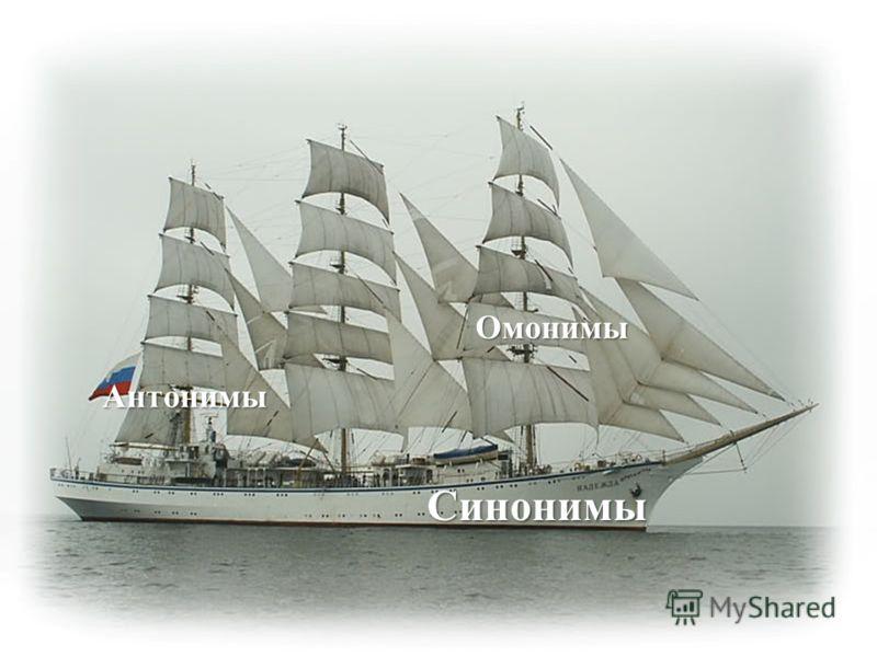 Синонимы Антонимы Омонимы