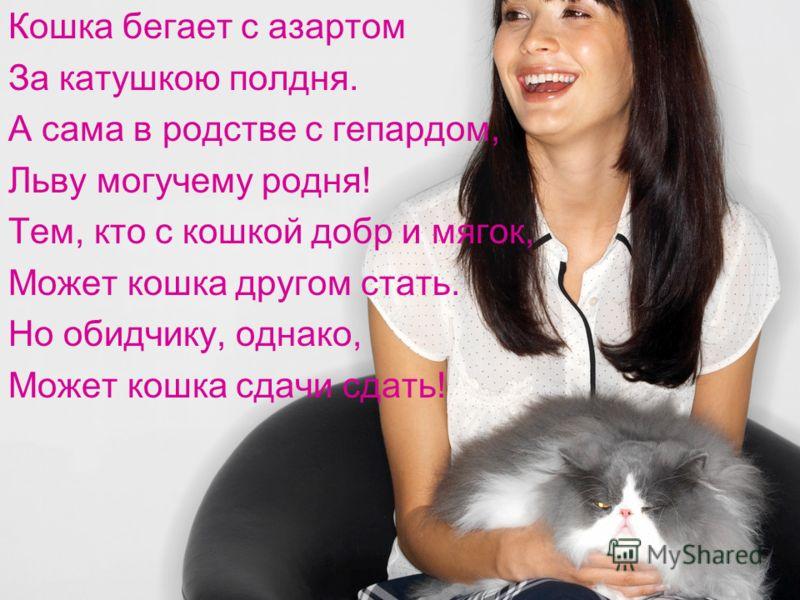 Кошка бегает с азартом За катушкою полдня. А сама в родстве с гепардом, Льву могучему родня! Тем, кто с кошкой добр и мягок, Может кошка другом стать. Но обидчику, однако, Может кошка сдачи сдать!