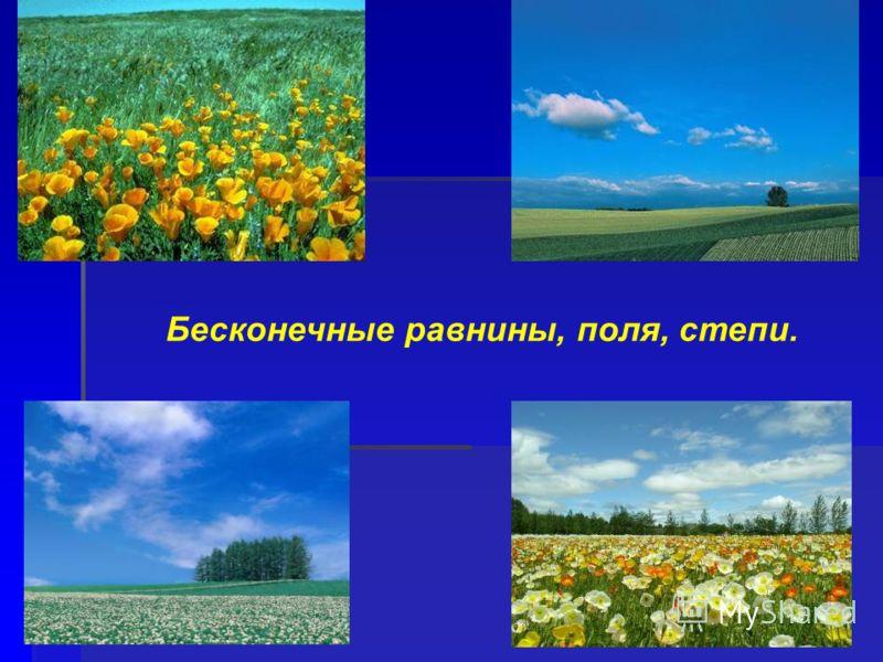 Бесконечные равнины, поля, степи.