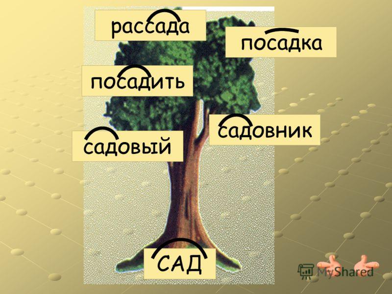 Корень слова – главная, Значимая часть. Родственные связи дарит корню власть. Выясни умело линию родства – Однокоренные подбери слова.