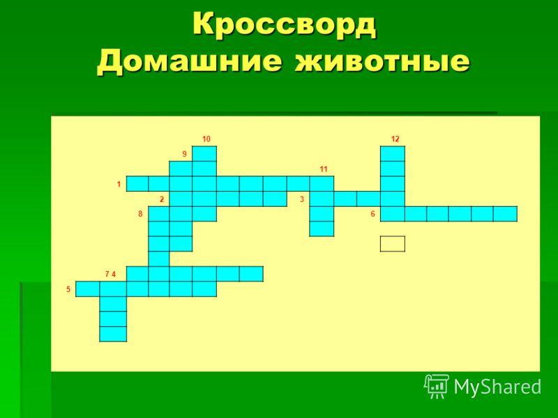Кроссворд Домашние животные 10 12 9 11 1 2 3 8 6 7 4 5