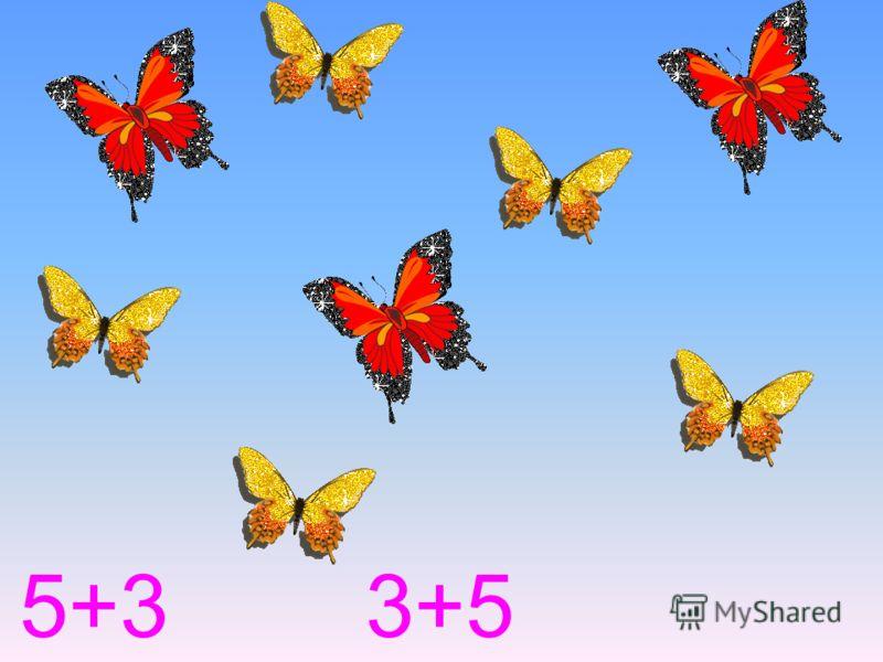 5+3 3+5