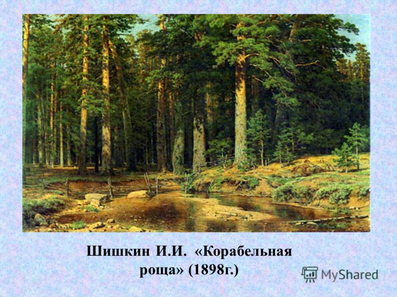 Шишкин И.И. «Корабельная роща» (1898г.)