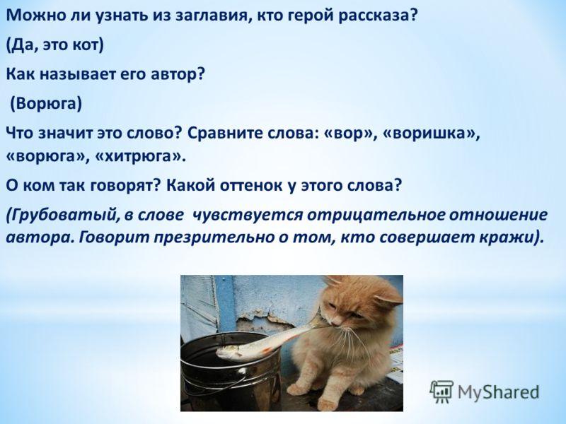 Можно ли узнать из заглавия, кто герой рассказа? (Да, это кот) Как называет его автор? (Ворюга) Что значит это слово? Сравните слова: «вор», «воришка», «ворюга», «хитрюга». О ком так говорят? Какой оттенок у этого слова? (Грубоватый, в слове чувствуе