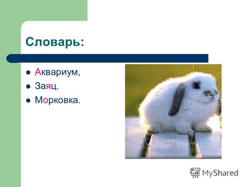 Словарь: Аквариум, Заяц. Морковка.