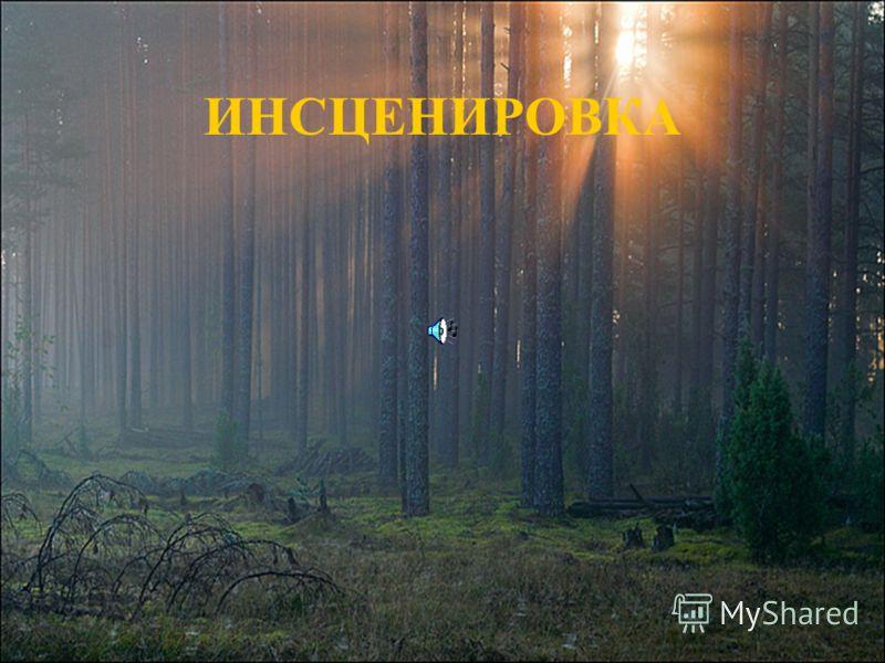 ИНСЦЕНИРОВКА