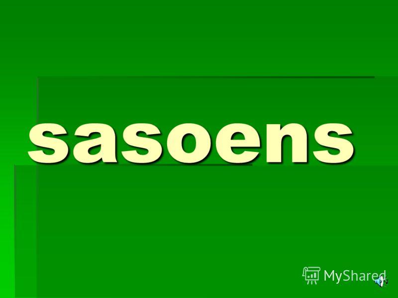 sasoens