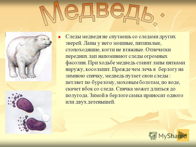 Кошка была одомашнена в Древнем Египте, где почиталась как священное животное. Постепенно кошка стала жить рядом с человеком во всех частях света. Она вытеснила из домов ужей, ласок, хорьков, истребляющих мышей и крыс. Появились разнообразные породы