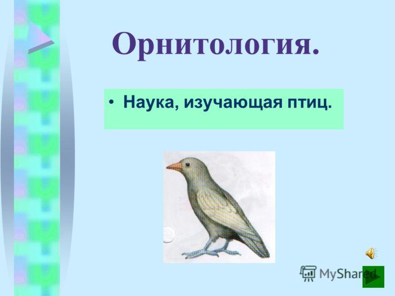 Ветеринария. Наука, изучающая болезни животных, методы их лечения и предупреж- дения.