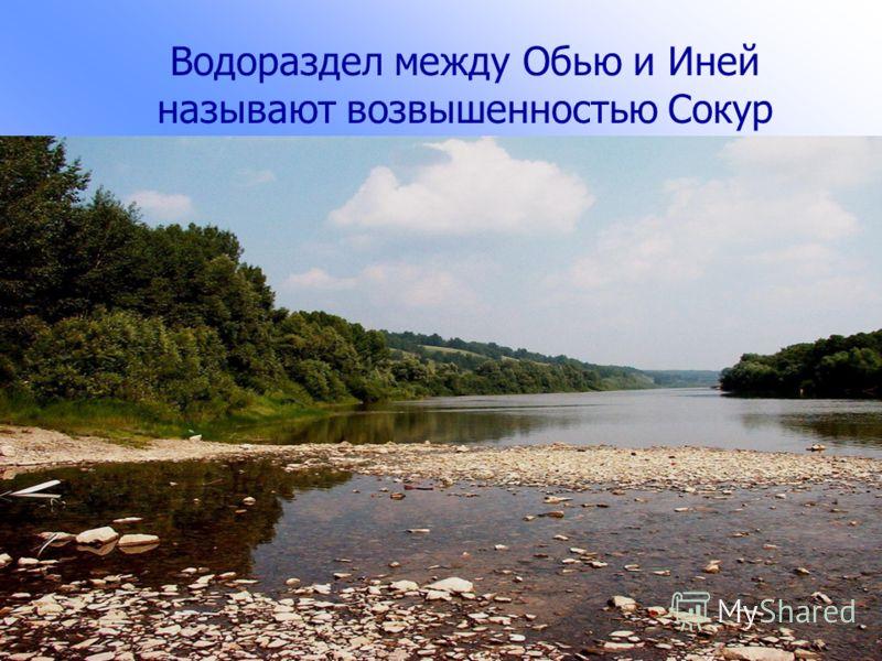 Рельеф. Геологическое строение района представлено палеозойским фундаментом,который перекрывают рыхлые палеогеновые, неогеновые и четвертичные отложения. Район расположен в пределах Приобской равнины. На Западно-Сибирской плите.Поверхность территории