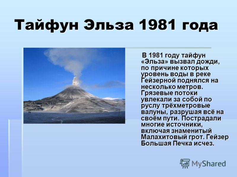 Тайфун Эльза 1981 года В 1981 году тайфун «Эльза» вызвал дожди, по причине которых уровень воды в реке Гейзерной поднялся на несколько метров. Грязевые потоки увлекали за собой по руслу трёхметровые валуны, разрушая всё на своём пути. Пострадали мног