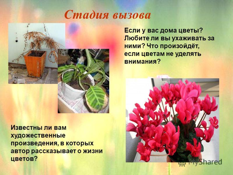 Если у вас дома цветы? Любите ли вы ухаживать за ними? Что произойдёт, если цветам не уделять внимания? Известны ли вам художественные произведения, в которых автор рассказывает о жизни цветов? Стадия вызова