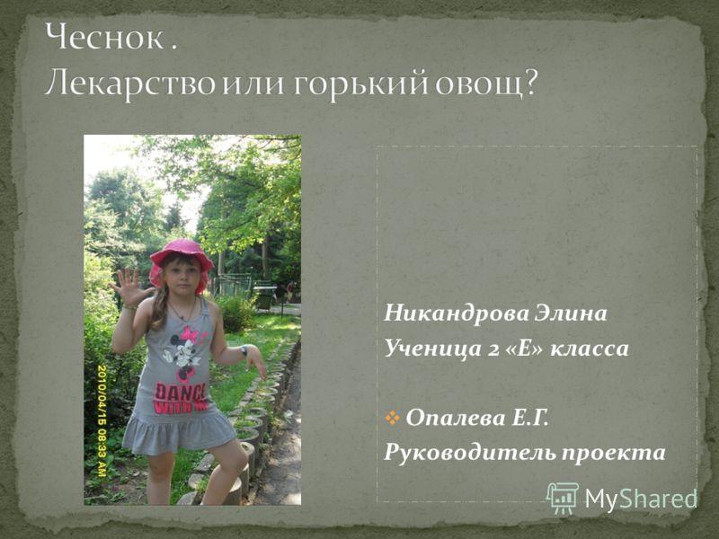 Никандрова Элина Ученица 2 «Е» класса Опалева Е.Г. Руководитель проекта