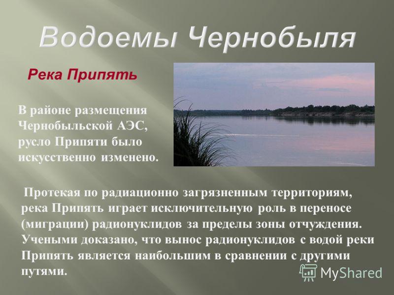 Река Припять В районе размещения Чернобыльской АЭС, русло Припяти было искусственно изменено. Протекая по радиационно загрязненным территориям, река Припять играет исключительную роль в переносе ( миграции ) радионуклидов за пределы зоны отчуждения.