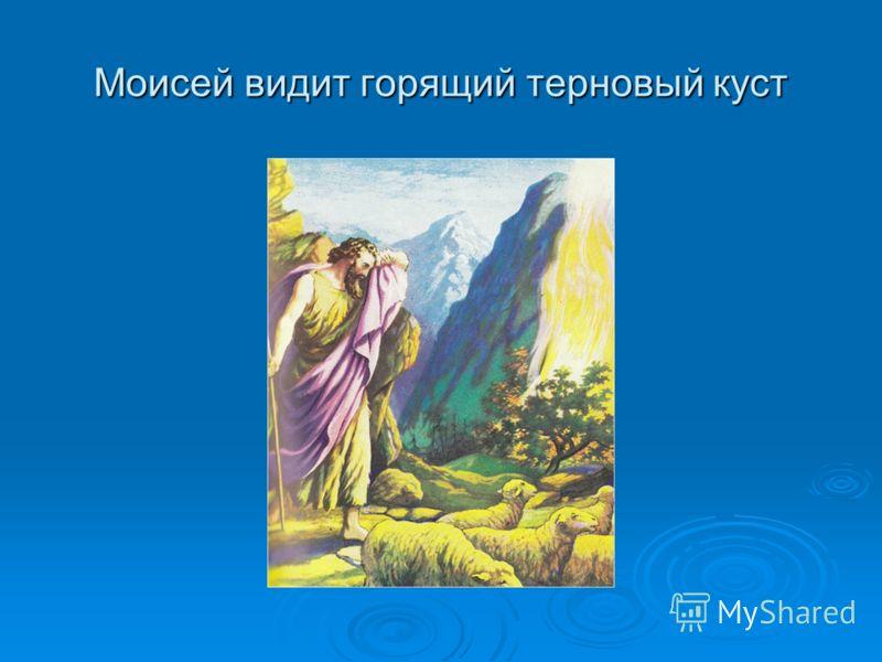 Моисей видит горящий терновый куст