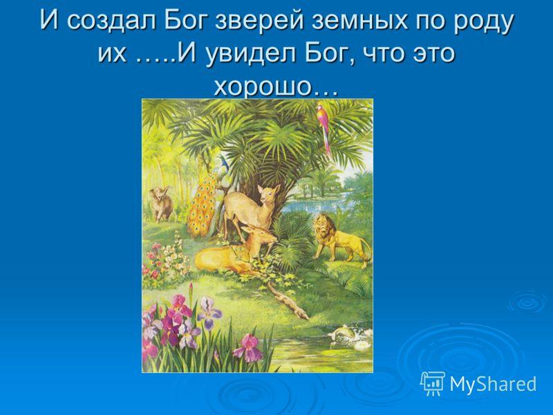 И создал Бог зверей земных по роду их …..И увидел Бог, что это хорошо…