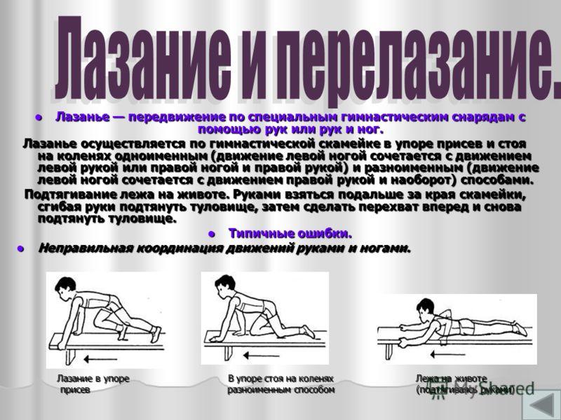 Лазанье передвижение по специальным гимнастическим снарядам с помощью рук или рук и ног. Лазанье передвижение по специальным гимнастическим снарядам с помощью рук или рук и ног. Лазанье осуществляется по гимнастической скамейке в упоре присев и стоя