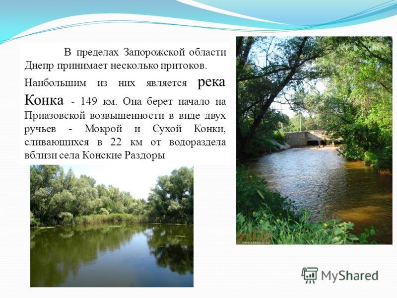 В пределах Запорожской области Днепр принимает несколько притоков. Наибольшим из них является река Конка - 149 км. Она берет начало на Приазовской возвышенности в виде двух ручьев - Мокрой и Сухой Конки, сливающихся в 22 км от водораздела вблизи села