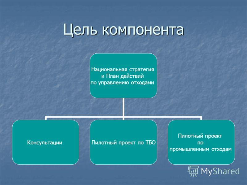 Цель компонента Национальная стратегия и План действий по управлению отходами КонсультацииПилотный проект по ТБО Пилотный проект по промышленным отходам