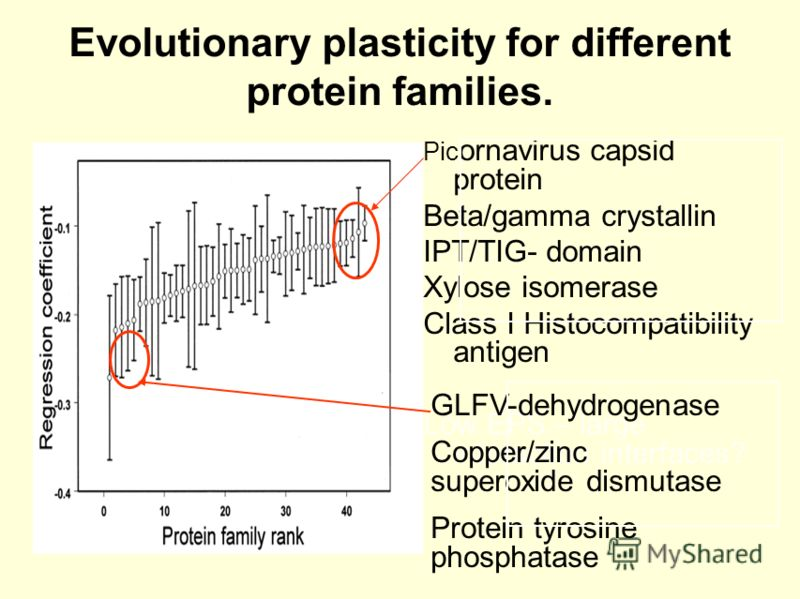 Evolutionary plasticity for different protein families. Pic ornavirus capsid protein Beta/gamma crystallin IPT/TIG- domain Xylose isomerase Class I Histocompatibility antigen Low EPS – large interaction interfaces? GLFV-dehydrogenase Copper/zinc supe