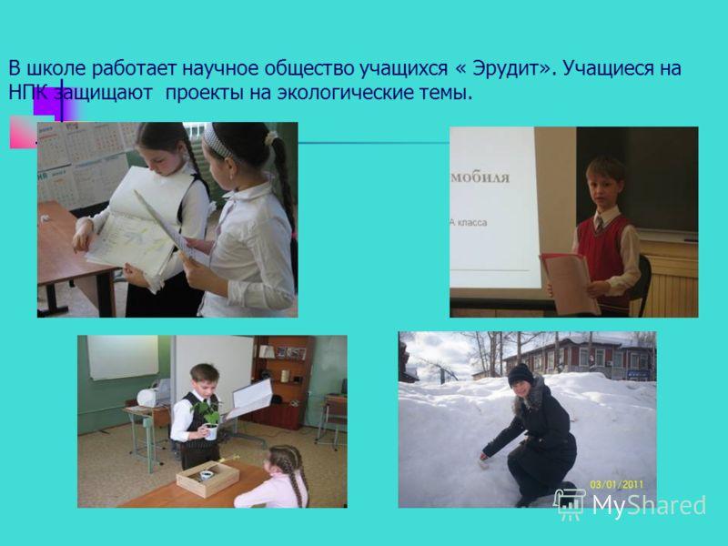 В школе работает научное общество учащихся « Эрудит». Учащиеся на НПК защищают проекты на экологические темы.